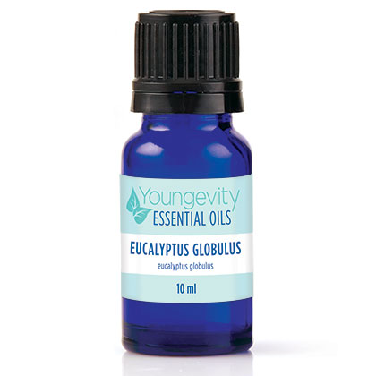Eucalyptus Globulus Essential Oil – 10ml